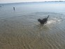 Luca-in-the-water.jpg