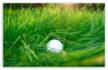golf-ball-in-high-grass.png