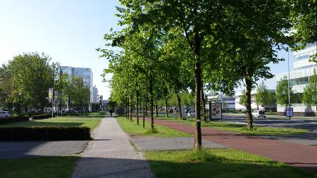 nextail-walking-to.png